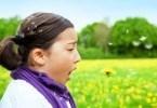 Сезонная аллергия и пути решения