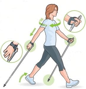 Техника скандинавской ходьбы для начинающих