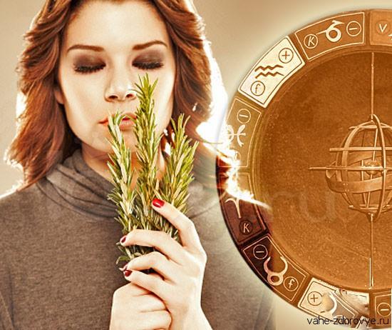 ароматы по знакам Зодиака в астрологии