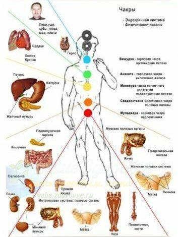 Чакры и болезни человека