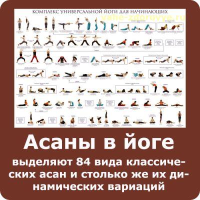 асаны в йоге история