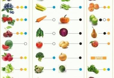 сохранение витаминов и способы