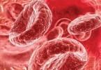 Как поднять гемоглобин крови