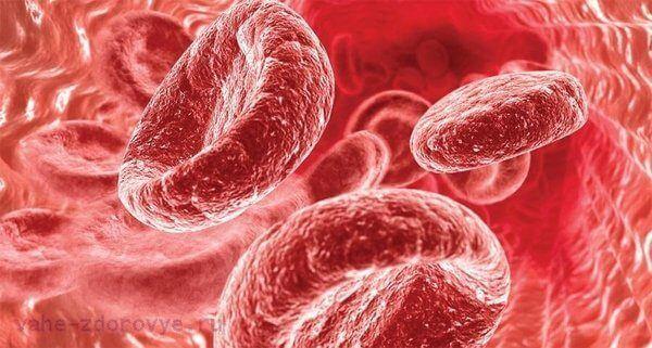 продукты поднимающие гемоглобин крови